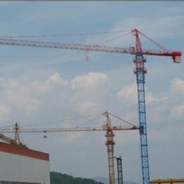ZJ5910  塔式起重机    建友建筑