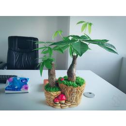 创意盆栽展示 花卉批发租摆