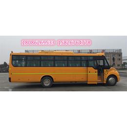 56座小学生中学生校车亚博国际版价格国五