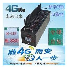 4g猫池厂家直销2G3G4G4g猫池大量出货猫池设备