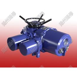 ZW系列扭矩100到10000nM江西地区阀门电动执行器