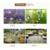 厂家直供山东绿陇生物水族EM益生菌净化水质降解氨氮防治鱼病缩略图4
