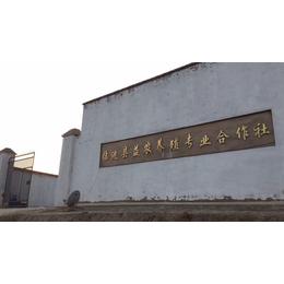 2018年临洮县益农养殖肉牛