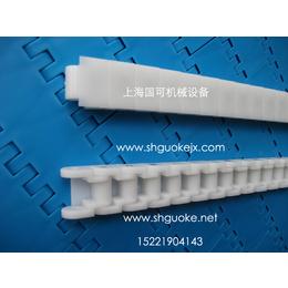 RS60P塑料链条-光伏塑料链条上海国可报价缩略图