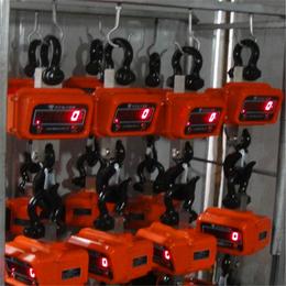 四川广元10吨直显有线电子吊钩秤多少钱一台