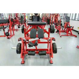 供应厂家直销奥信德健身器材蹬腿练习器悍马器械