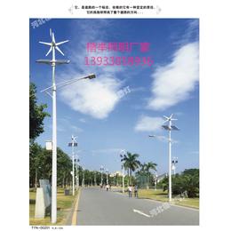容城乡村6米30瓦太阳能路灯 LED路灯制造厂家直销