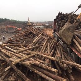 高质量高效益  打桩木建材