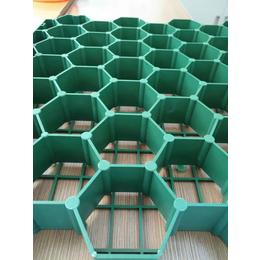 加强型植草格7公分5公分4公分植草格厂家
