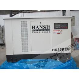 福州30千瓦燃气节能发电机组