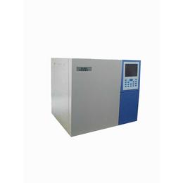 科旺GC-8910天然气全分析 气相色谱仪天然气分析