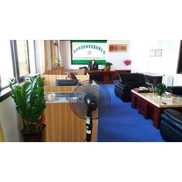 办公室地板 桌球室 展厅悬浮式拼装地板