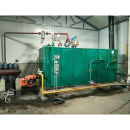 燃气节能蒸汽发生器三分钟出蒸汽 蒸发器