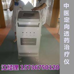 中医定向透药仪-体外药离子渗透疗法