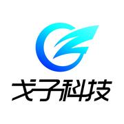 广州市五宫格信息科技有限责任公司