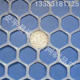 诺克 大孔塑料平网 养殖胶网 家禽养殖网 养殖漏粪网