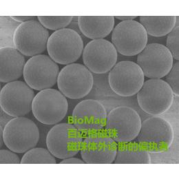 GST标签蛋白纯化磁珠