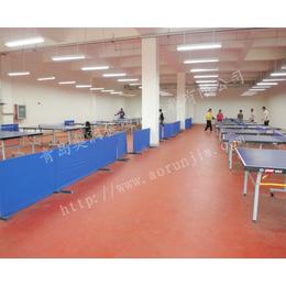 乒乓球塑胶地板 PVC地板