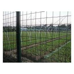 环森丝网厂家直销荷兰养殖网 质量保证 物美价廉