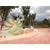 鹅卵石砖|景德镇市申达陶瓷厂 |西双版纳鹅卵石缩略图1