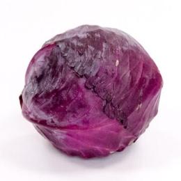 有机 紫甘蓝