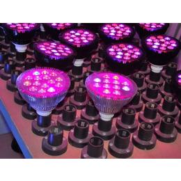 led植物补光灯多少钱,led植物补光灯,同凯电子