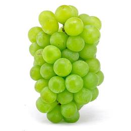 新鲜 醉金香葡萄