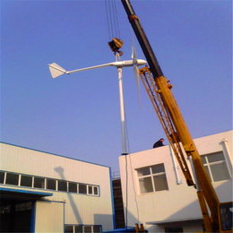 晟成1000W微型家用风力发电机风光互补水平轴同步电机