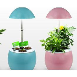 蔬菜补光灯有用吗、同凯电子、蔬菜补光灯