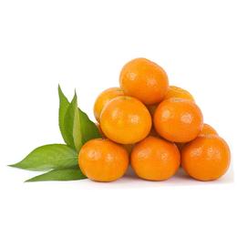 生态农产品 有机蔬菜食物  柑橘