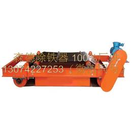 厂家直销供应磁滚筒式输送带除铁器除铁机自卸式除铁器
