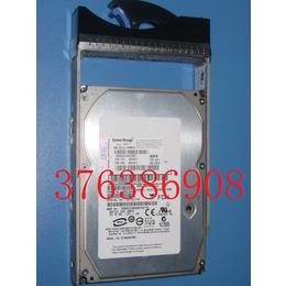 IBM 5416 44X2450 DS4800硬盘