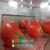 玻璃钢西红柿凳树脂圣女果椅子番茄凳子幼儿园卡通水果椅凳雕塑缩略图2