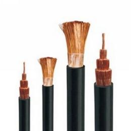 泰开电缆-铜芯硅橡胶绝缘电机绕组引接线
