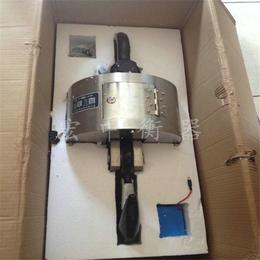 西藏10T远程操控电子吊秤