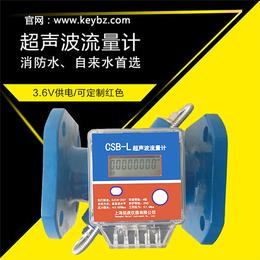 厂家直销管道式超声波流量计上海佰质仪器仪表有限公司