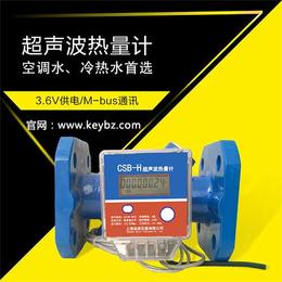 厂家直销管道式超声波热量表上海佰质仪器仪表有限公司