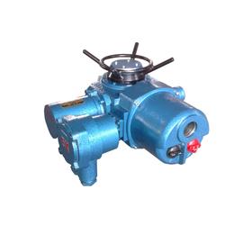 供应隔爆机电一体化电动执行器DZB10-WK