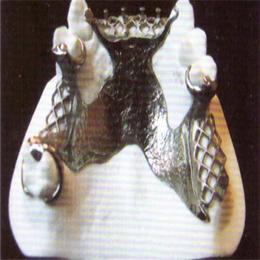 腾飞义齿 纯钛钢托