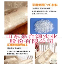 嘉合源JHY-499厂家生产环保购物袋礼品袋 档案袋流延膜