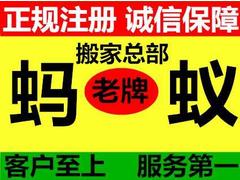 广州蚂蚁搬家展示图片