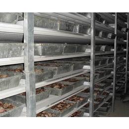 合肥冷库工程,安徽好利得(在线咨询),大中型冷库工程