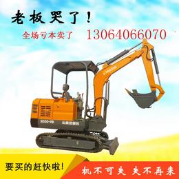 国产小挖掘机的用途   山鼎SD30-9B