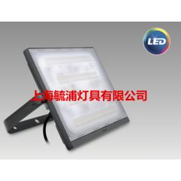 飞利浦园林照明LED射灯BVP172 50W