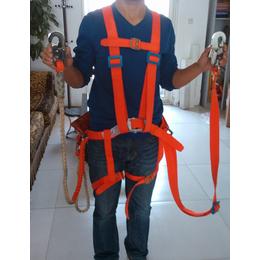 江苏省国家标准安全带厂家 工地施工专用安全带
