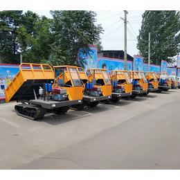 水田履带运输车 在稻田拉混凝土的车 山东济宁厂家