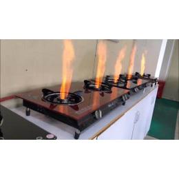 供应四川新源素环保燃油技术合同配套生物燃油灶具