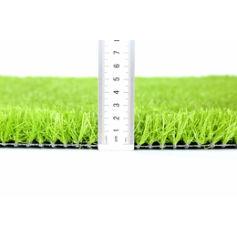 小区人造草坪丨河北人造草坪厂家丨河北绿化带厂家