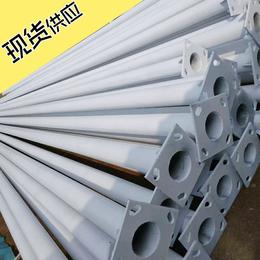 热镀锌喷塑灯杆 6米-8米 河北利祥现货供应