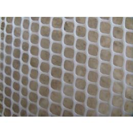 厂家直供阻燃塑料网 灯箱阻燃网 耐腐蚀网 塑料平网 胶网 缩略图